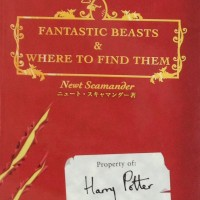 『ファンタスティック・ビーストと魔法使いの旅』に登場する魔法動物が魅力的すぎる!