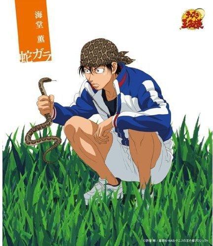 『テニスの王子様』海堂薫人付き合い01