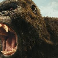 映画『キングコング:髑髏島の巨神』徹底解説 謎に包まれた巨大生物の生態も紹介