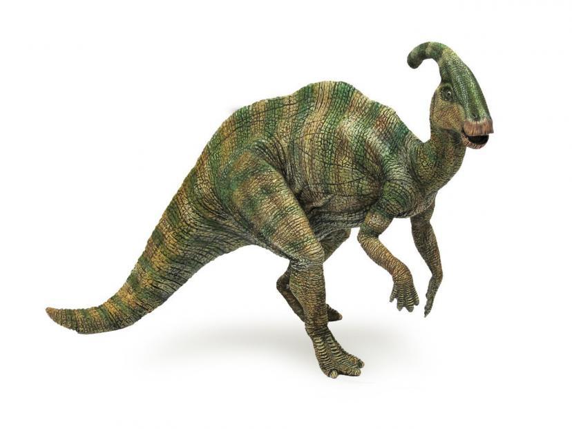 ジュラシック・パーク パキケファロサウルス