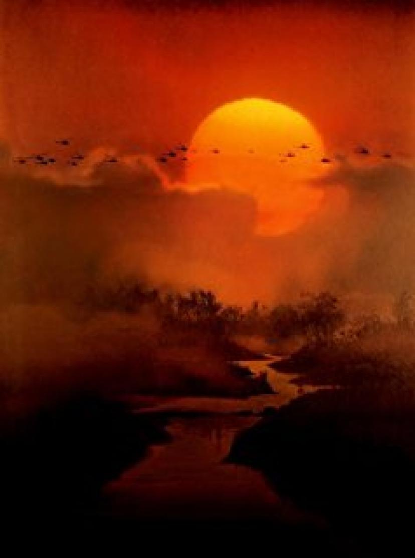 Apocalypse Now Poster German 27x40 Marlon Brando Martin Sheen Robert Duvall