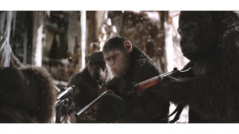 あなたが知らない猿の惑星に関する20のこと Ciatrシアター