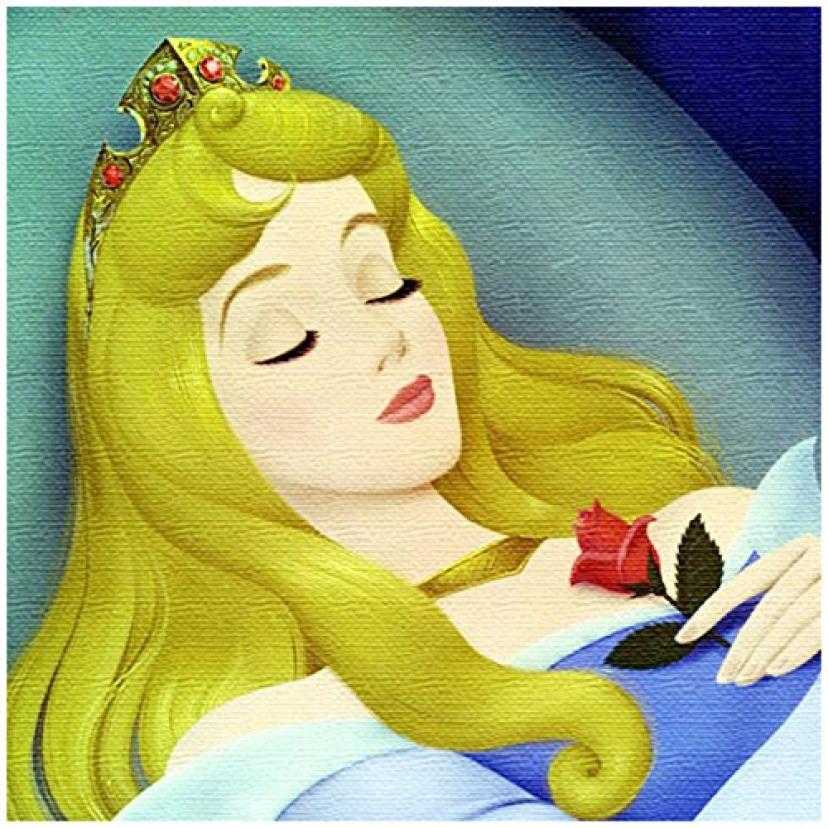取寄品:3週間前後 ファブリックパネル (オーロラ姫) 眠れる森の美女 マレフィセント アートデリ インテリア