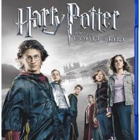 映画「ハリー・ポッター」シリーズに登場する全ドラゴンまとめ【炎のゴブレットでハリーが直接対決!】