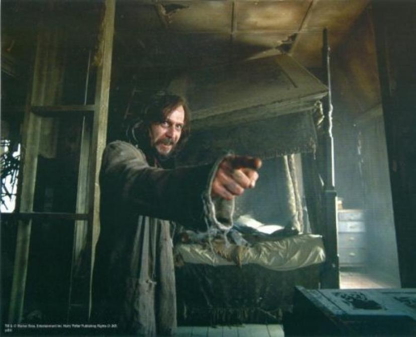 Gary Oldman 8x10 photo Harry Potter Sirius Black Image #11