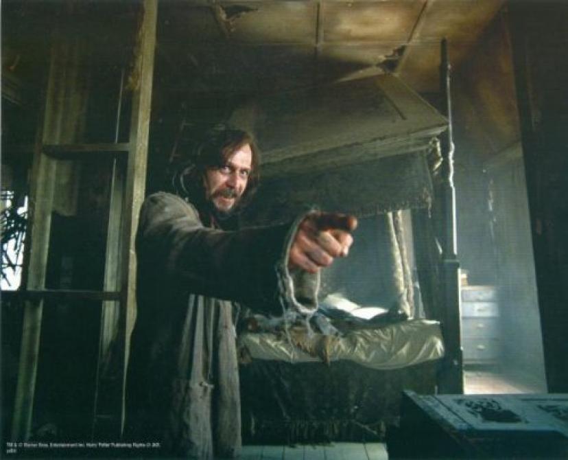 Gary Oldman 8x10 photo Harry Potter Sirius Black Image #11