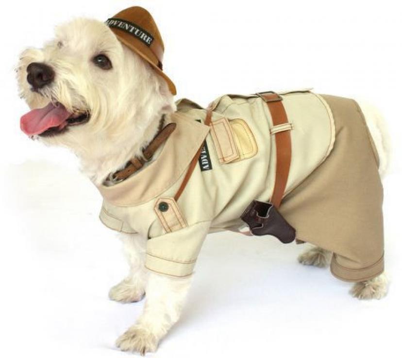 Dog Costume INDIANA BONES COSTUMES Jones Adventure Dogs Clothes(Size 5)