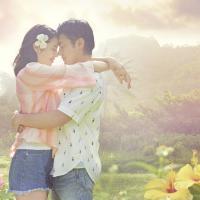 【結末ネタバレ】日本版『50回目のファーストキス』 キャスト一覧&見所を一挙紹介