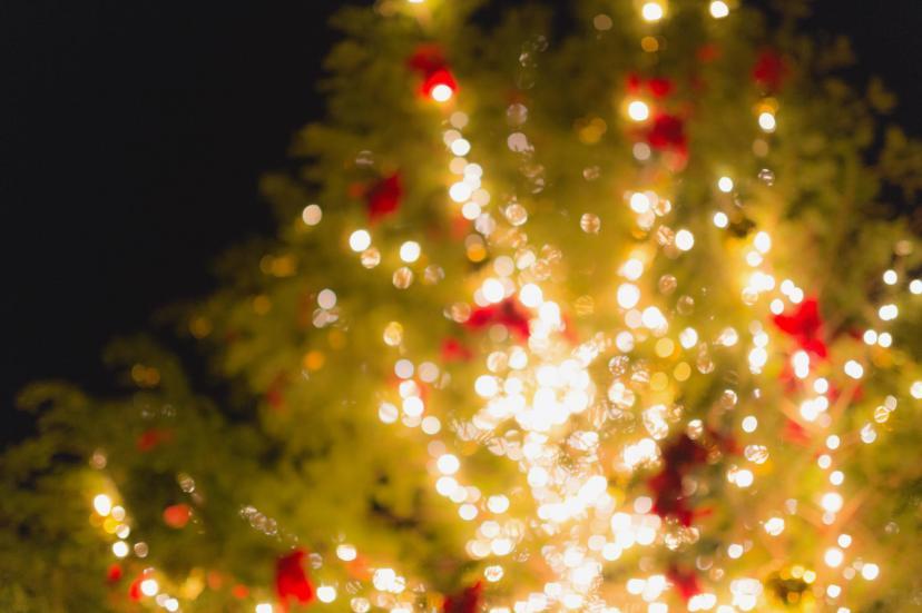 フリー画像、クリスマス