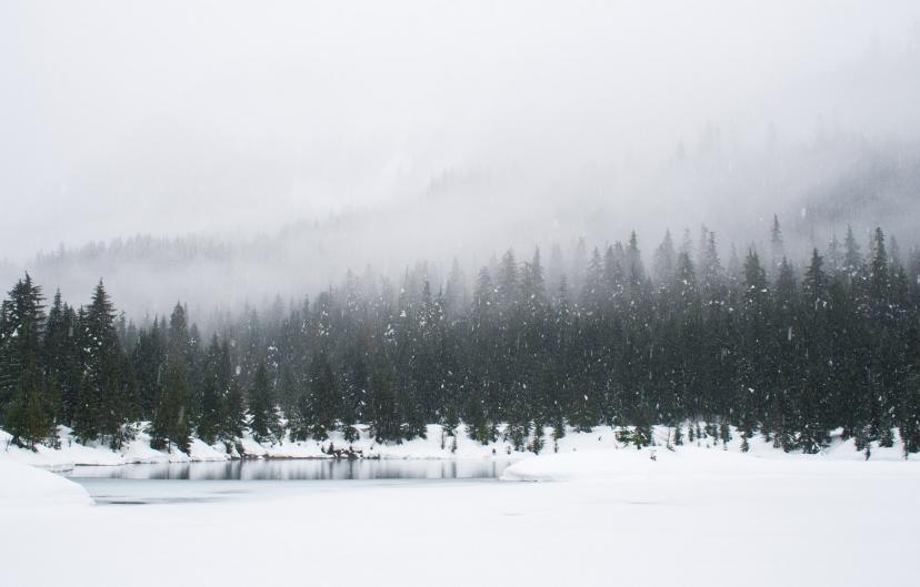 冬 雪 フリー画像
