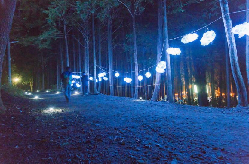 夜空と森の映画祭