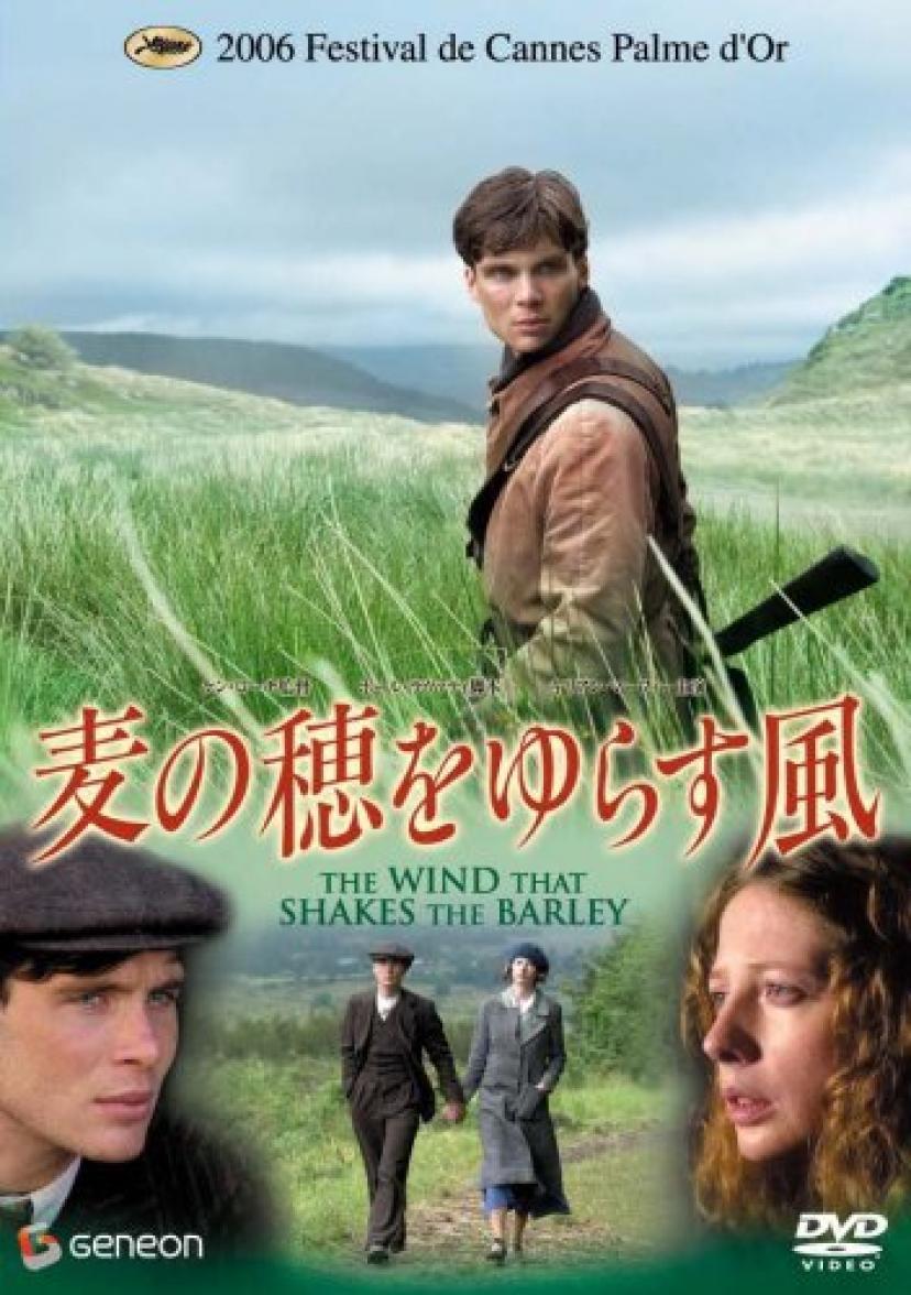 麦の穂をゆらす風