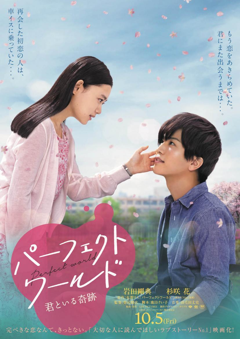 『パーフェクトワールド 君といる奇跡』岩田剛典、杉咲花