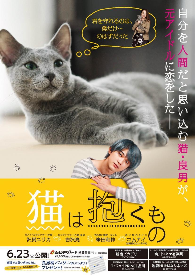 『猫は抱くもの』チラシ裏