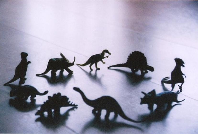 恐竜 フリー画像
