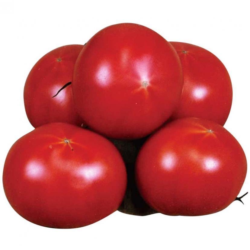 """高糖度トマト """"アメーラ"""" 約900g"""