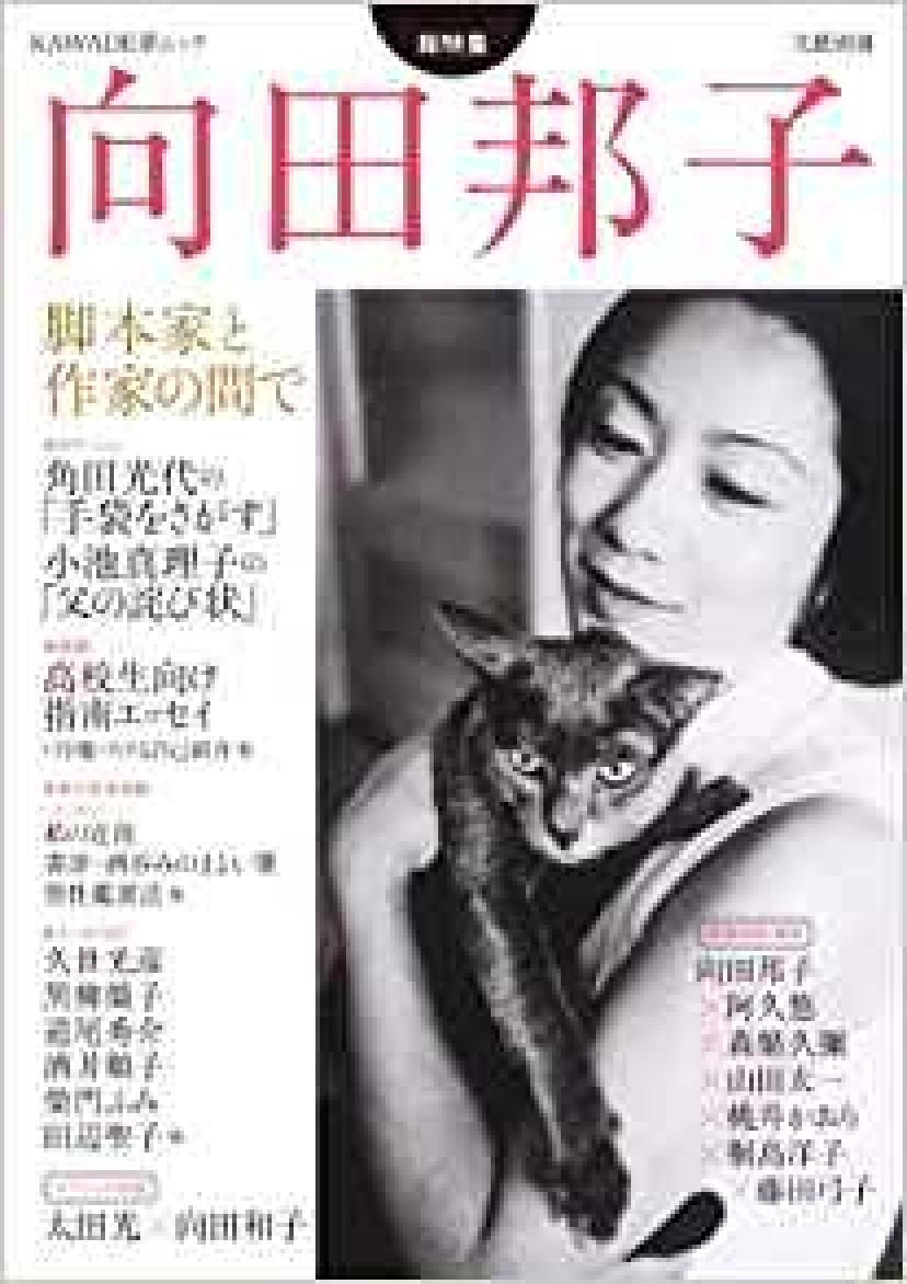 『向田邦子 脚本家と作家の間で』