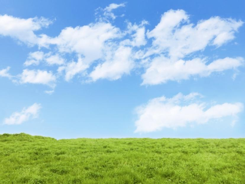 フリー 青空 芝生