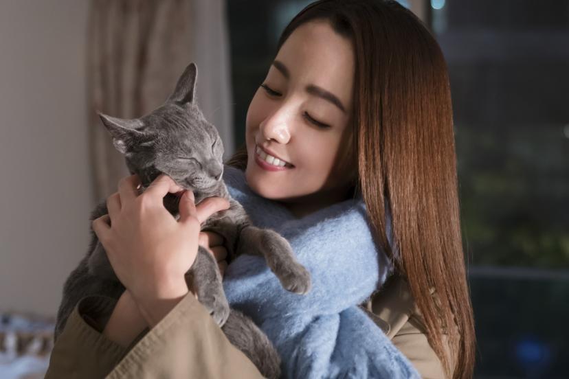 沢尻エリカ『猫は抱くもの』