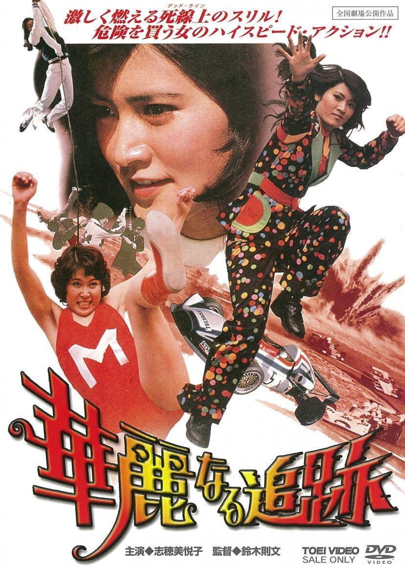 「華麗なる追跡」/DVD発売中 2,800円+税 販売:東映 発売:東映ビデオ