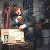 「ファンタビ」主人公ニュート・スキャマンダーを徹底解剖!ハリーとの共通点とは?