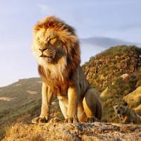 映画『ライオンキング』に登場する挿入歌・名曲一覧 日本語・英語版サントラの解説付き