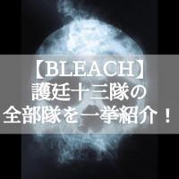 『BLEACH(ブリーチ)』護廷十三隊について徹底解説!【新旧隊長まで網羅】