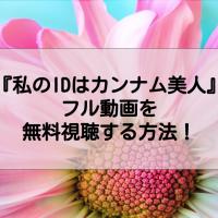 『私のIDはカンナム美人』のフル動画を無料視聴する方法は?【1話から最終回までを日本語字幕で】
