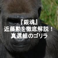 『銀魂』近藤勲は本当はかっこいい!?真選組のゴリラ局長を解説
