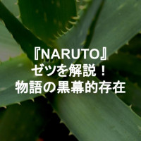 『NARUTO -ナルト-』謎多き存在・ゼツを解説!物語を影で煽動していた黒幕的存在