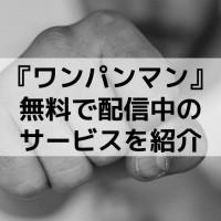 アニメ『ワンパンマン』(1期・2期)のフル動画を無料配信しているサービスを紹介!