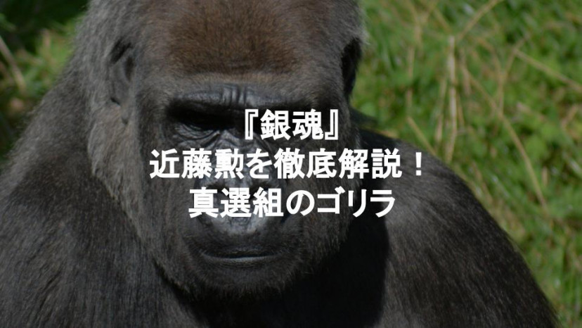 銀魂 近藤勲 サムネイル