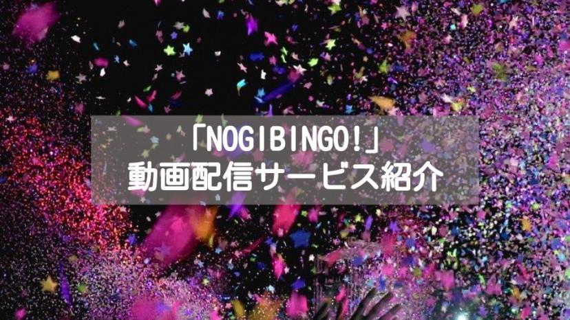 「NOGIBINGO」配信系記事 サムネイル