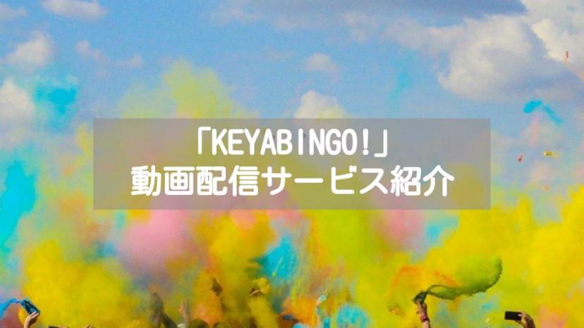 「KEYABINGO」配信系記事 サムネイル