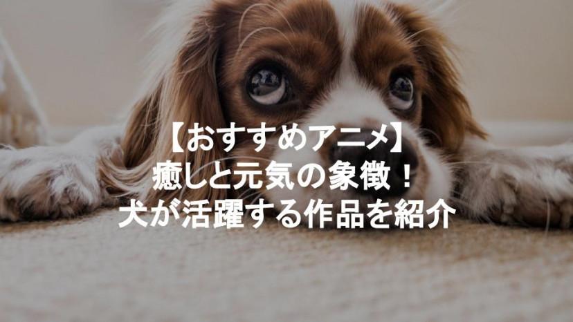 犬 アニメ サムネイル