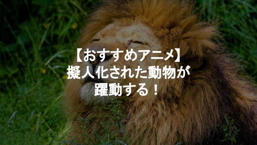 動物 アニメ サムネイル