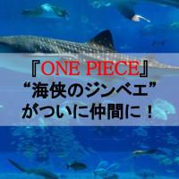"""【ワンピース】""""海侠のジンベエ""""がついに仲間に!魚人の親分が辿った軌跡を振り返る"""