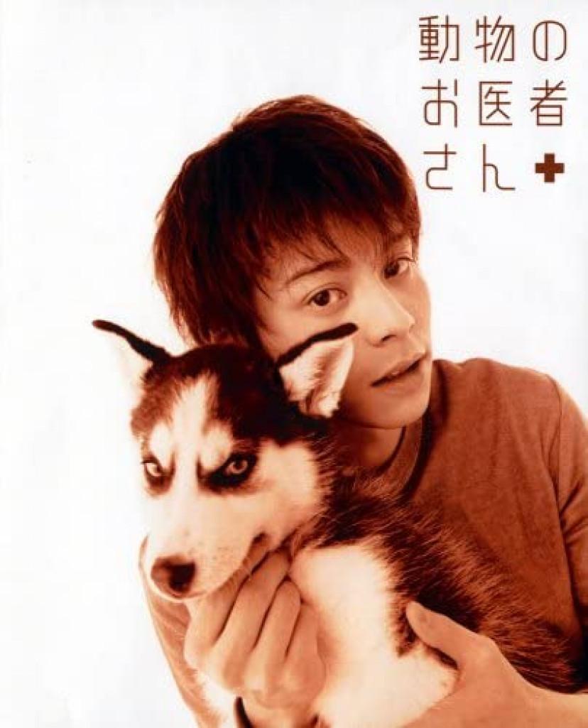 動物のお医者さん、吉沢悠、犬ドラマ