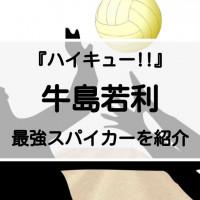 『ハイキュー!!』最強スパイカー牛島若利(ウシワカ)を紹介!絶対的強者のプライド