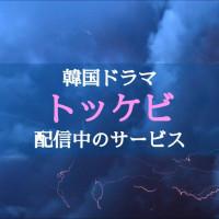 韓国ドラマ「トッケビ」のフル動画を無料視聴する方法は?【日本語字幕で最終回まで】