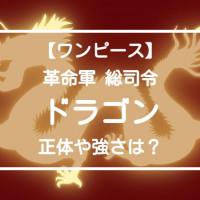 【ワンピース】モンキー・D・ドラゴンの情報を整理!謎多き革命軍のトップ