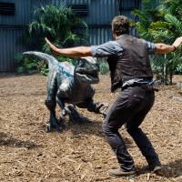 賢い恐竜ラプトルの活躍を振り返る!『ジュラシック・ワールド』で生まれた人間との絆