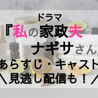 ドラマ『私の家政夫ナギサさん』あらすじ・キャストを紹介【1話見逃し動画を無料視聴する方法もチェック】