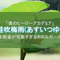 【ヒロアカ】蛙吹梅雨(あすいつゆ)は内通者?かわいいカエル少女の魅力を紹介!