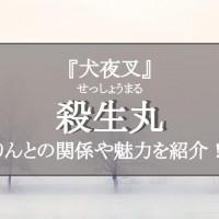 殺生丸(せっしょうまる)がかっこいい!『犬夜叉』で1番イケメンな妖怪を徹底紹介