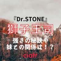 『Dr.STONE』獅子王司(ししおうつかさ)を徹底解説!その強さや過去とは一体……?