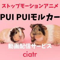 『PUI PUI モルカー』を全話無料で観たい!動画配信サービスを紹介【見逃しても安心】