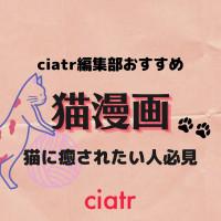 おすすめ猫漫画を14作品紹介!twitterやブログで連載されていた人気作品が多数