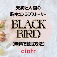 漫画『BLACK BIRD』を全巻無料で読む方法を調査【アプリやサイトで読もう】