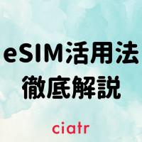 eSIMとは?iPhoneの人必見!格安SIM最強活用法